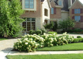 Timberwood Landscape Company - Gallery Photo 28
